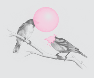 birds, pink, and bubble image