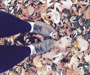 fall, 2014, and oxfords image