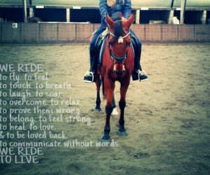 horse, love, and dressage image