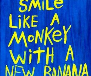 smile, monkey, and quotes image