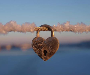 frost, winter, and love image