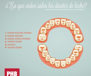 dientes, dientitos, and dentist to be image