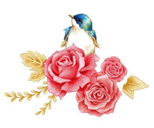 bird, drawing, and roses image