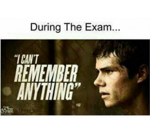 exam, funny, and dylan o'brien image