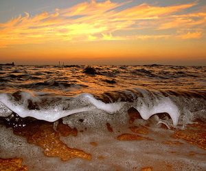 waves, beach, and ocean image