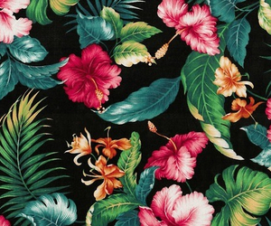 flowers, tropical, and wallpaper image