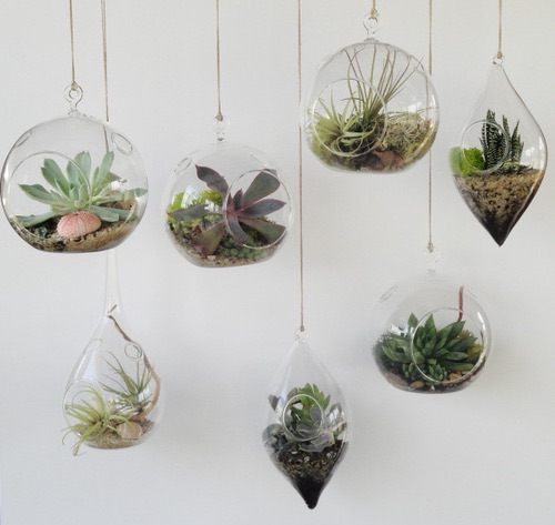decor, hipster, and natural image