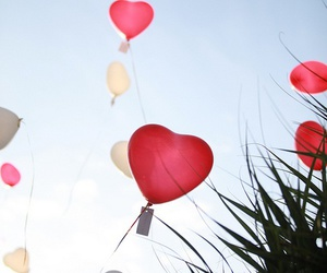 balloons, color, and heart image