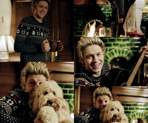 dog, four, and niall horan image