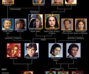 star wars and family tree image