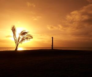 beach, photography, and sunrise image