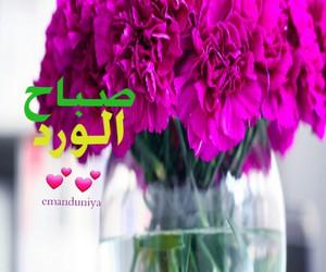 Image by eman duniya