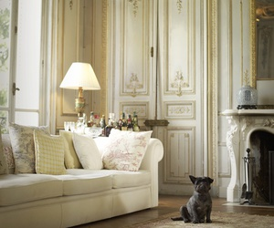 animal, luxury, and decor image