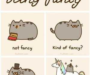 fancy, cat, and unicorn image
