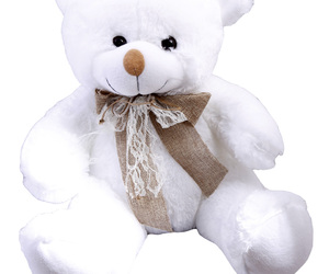 classic, gift, and teddybear image
