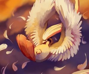 pokemon and pidgeot image