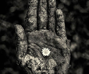hand, art, and flower image