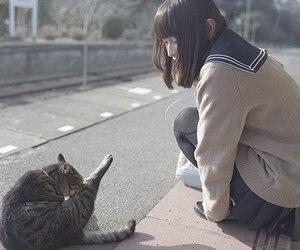 girl, cat, and kawaii image