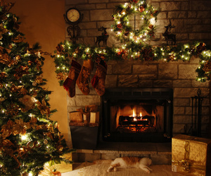 christmas, light, and christmas tree image