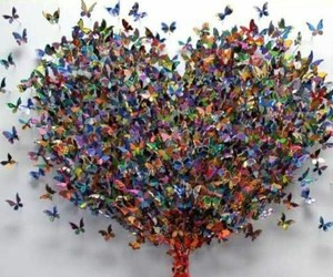 butterflies, heart, and spread image