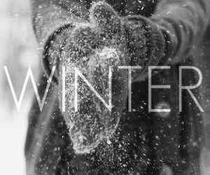 winter, snow, and cold image