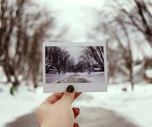 amazing, day, and winter image