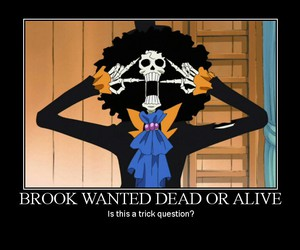 brook, one piece, and funny image