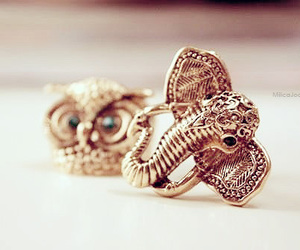 elephant, owl, and rings image
