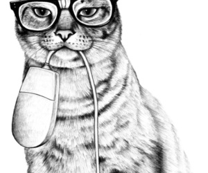 cat, mouse, and glasses image
