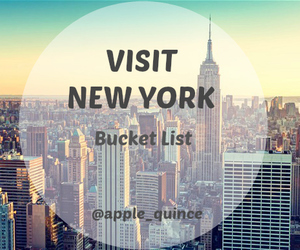 Dream, new york, and visit image