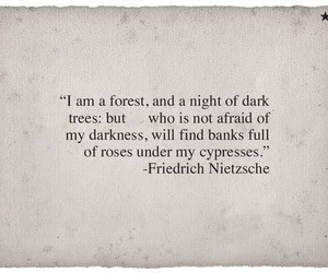 quote, forest, and Darkness image