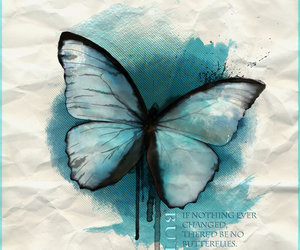 butterfly, idea, and tatoo image