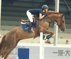 fly, horseriding, and jump image