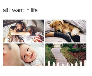 dog, baby, and family image