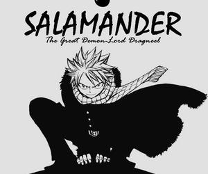 fairy tail, natsu, and salamander image