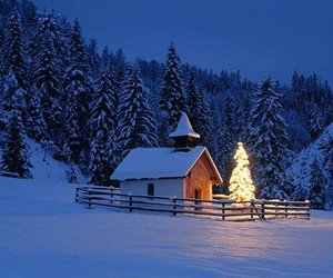 beautiful, cabin, and lights image