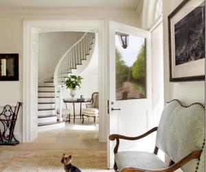 house, decor, and dog image