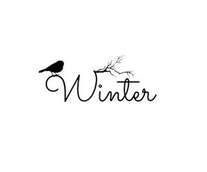 winter, bird, and black and white image