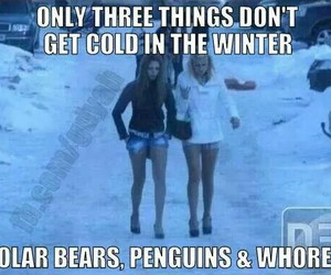 cold, winter, and funny image