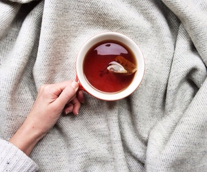 tea and drink image