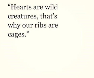 hearts, quote, and cage image
