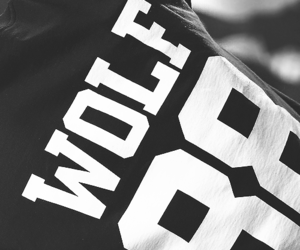 exo, wolf, and 88 image