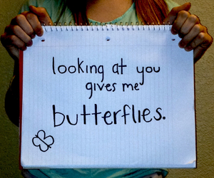 boys, butterflies, and crush image