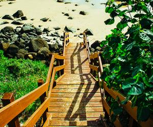 beach, australia, and summer image