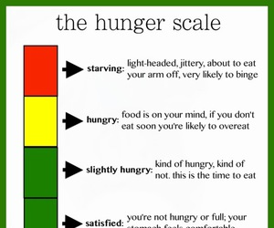 health and hunger scale image