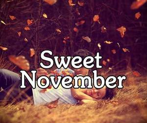 autumn, beautiful, and couple image