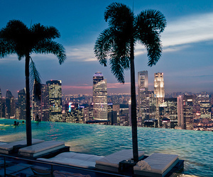 hotel, luxury, and palm tree image