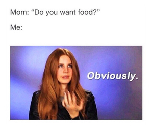 food, funny, and lana del rey image
