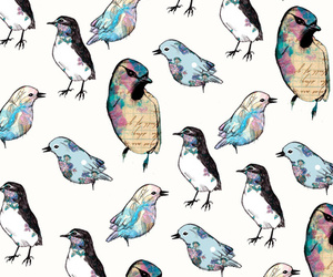 bird and wallpaper image