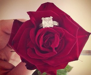 boyfriend, ring, and roses image